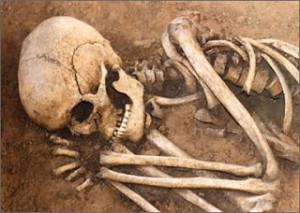 [2] Bones (Unattributed - photographer unknown)