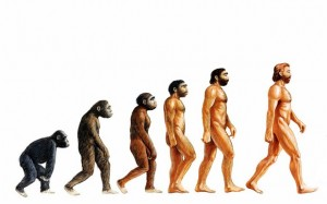 Evolution (image source - www.telegraph.co.uk)